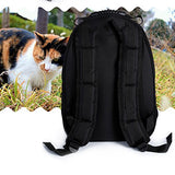Dofover Dog Cat Pet Bubble Carrier Backpack Airline Approved For Travel Hiking Carrier For Dogs And