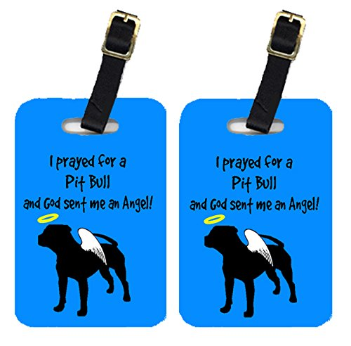 Caroline's Treasures AN1153BT Pair of 2 Pit Bull Luggage Tags, Large, multicolor
