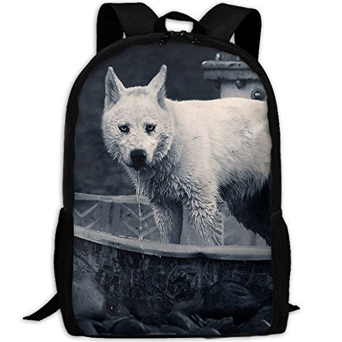 Animals Geographic National Unisex Backpack Lightweight Laptop Bags Shoulder Bag School Bookbag