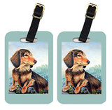 Caroline's Treasures 7023BT Pair of 2 Dachshund chocolate and tan Long Haired Luggage Tags, Large, multicolor
