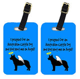 Caroline's Treasures AN1110BT Pair of 2 Australian Cattle Dog Luggage Tags, Large, multicolor