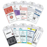 Cruise Luggage Tags, Carnival 2019 Etag Holders Zip Seal & Steel, Great Cruise Ship Accessories(10 Pack)