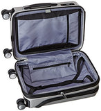 Delsey Luggage Helium Titanium International Carry-On Exp Spinner Trolley, Silver, One Size