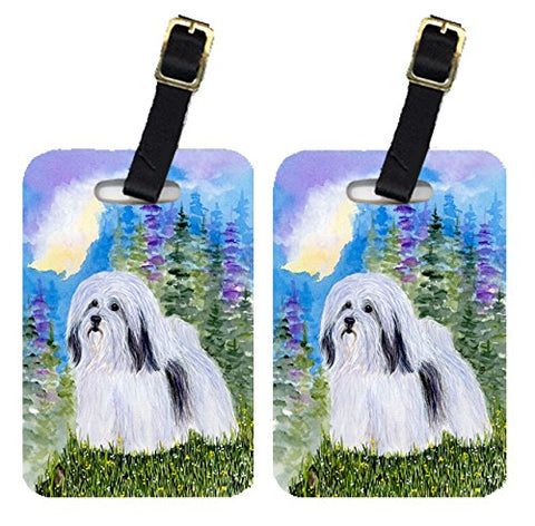 Carolines Treasures Ss1034Bt Havanese Luggage Tag - Pair 2, 4 X 2.75 In.