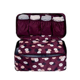 Damara Ladies Travel Bra Underwear Bag Organizers Portable Tidy Cosmetic Pocket,Wine Red