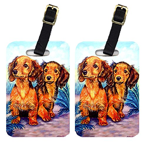 Caroline's Treasures 7022BT Long Hair Red Dachshund Luggage Tags Pair of 2, Large, multicolor
