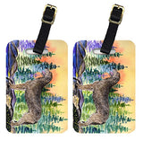 Caroline's Treasures SS8205BT Pair of 2 Irish Wolfhound Luggage Tags, Large, multicolor