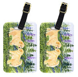 Caroline's Treasures SS8102BT Pair of 2 Golden Retriever Luggage Tags, Large, multicolor