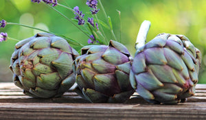 INGREDIENT SPOTLIGHT: ARTICHOKES