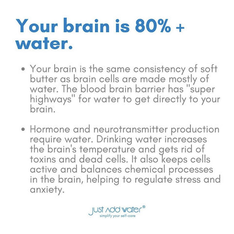 Water and brain health