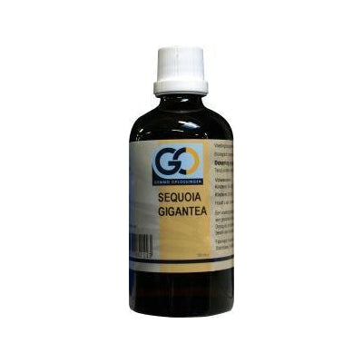 GO Sequoia gigantea 100 ml