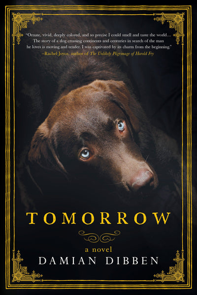 Tomorrow: A Novel by Damian Dibben