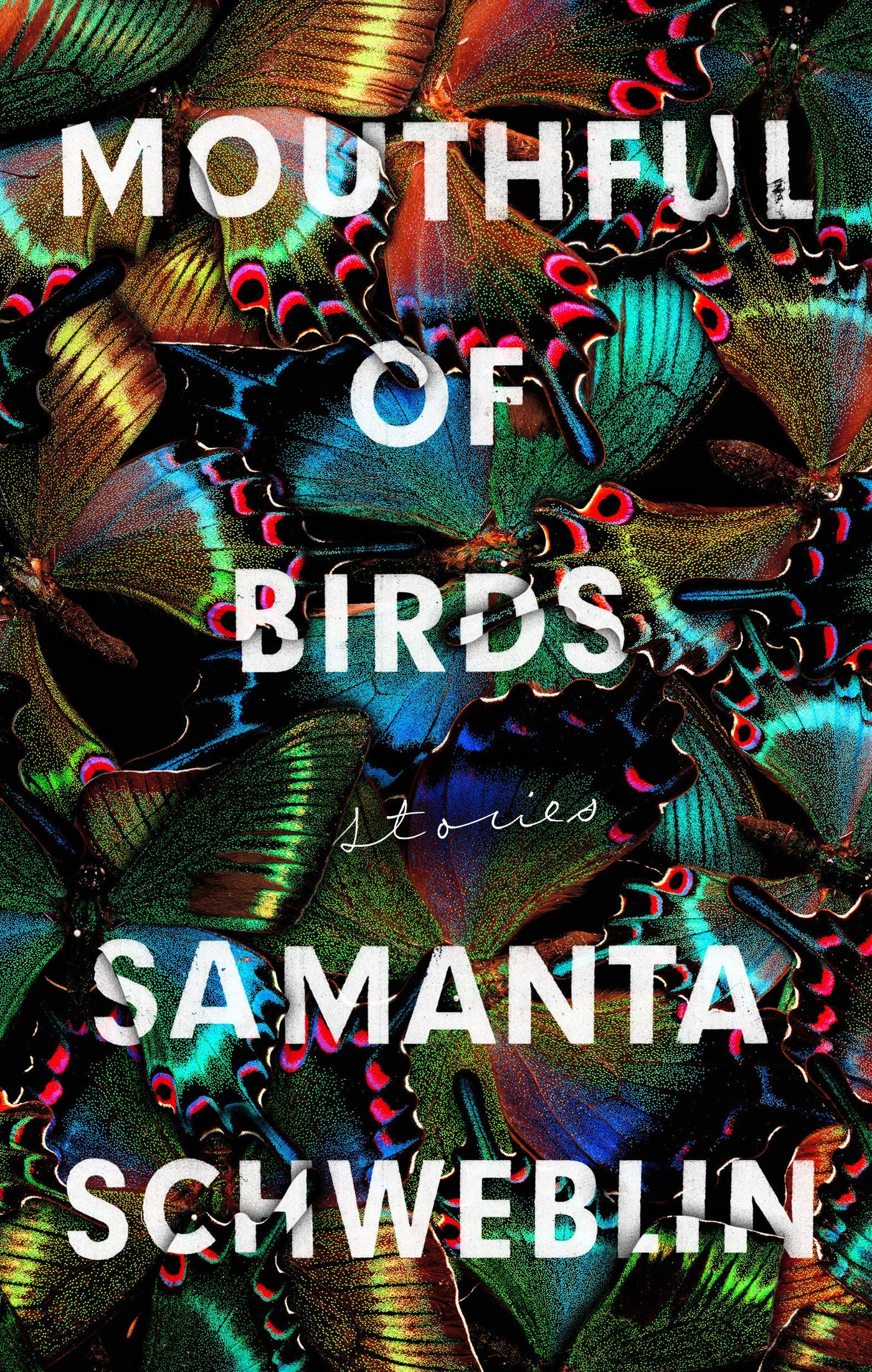 Mouthful of Birds: Stories by Samanta Schweblin