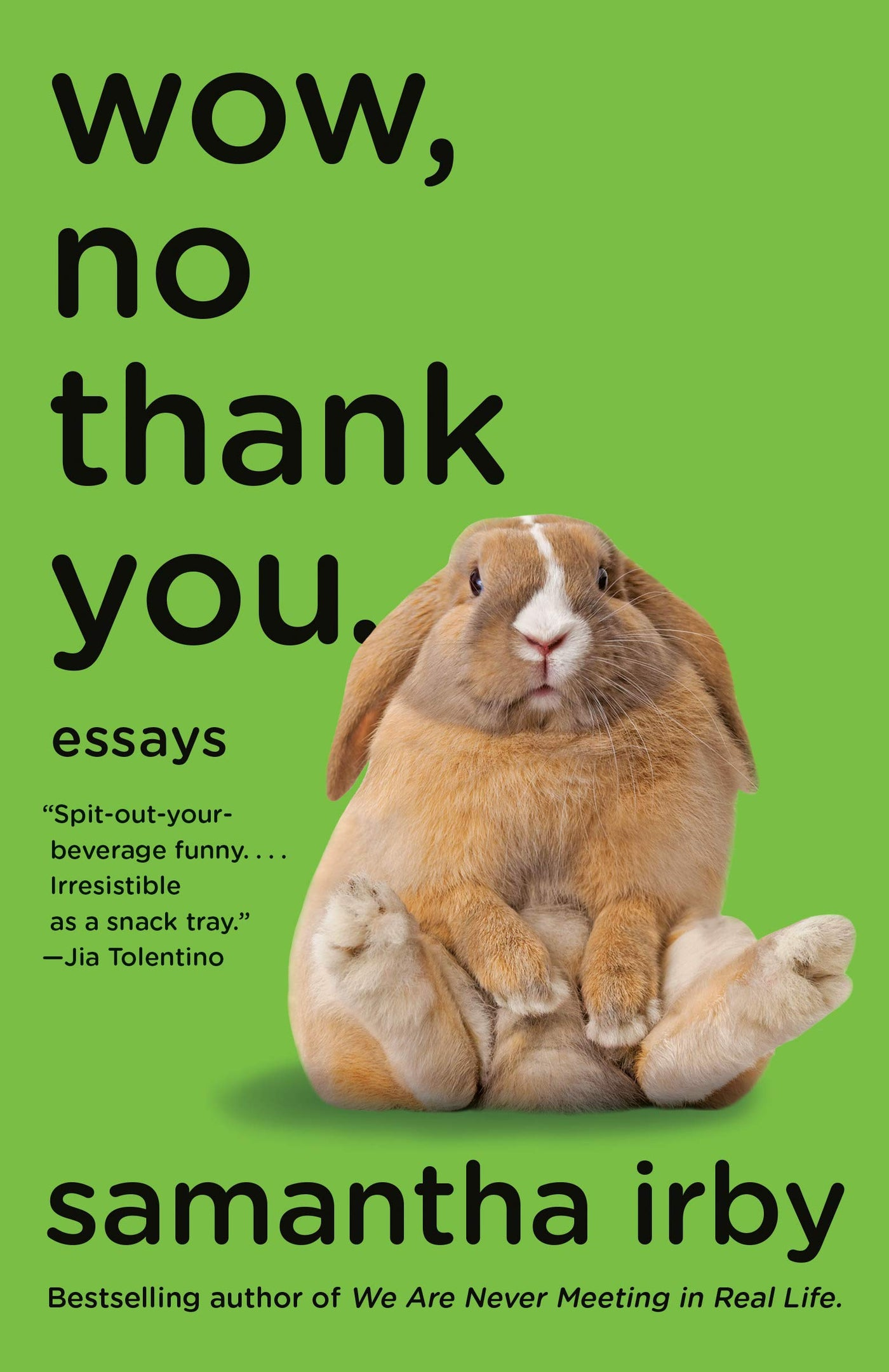 Wow, No Thank You.: Essays by Samantha Irby