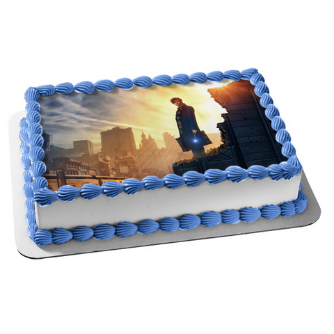 Fantastic Beasts and Where to Find Them Newt Scamander Standing on the Edge Sunset Edible Cake Topper Image ABPID00153