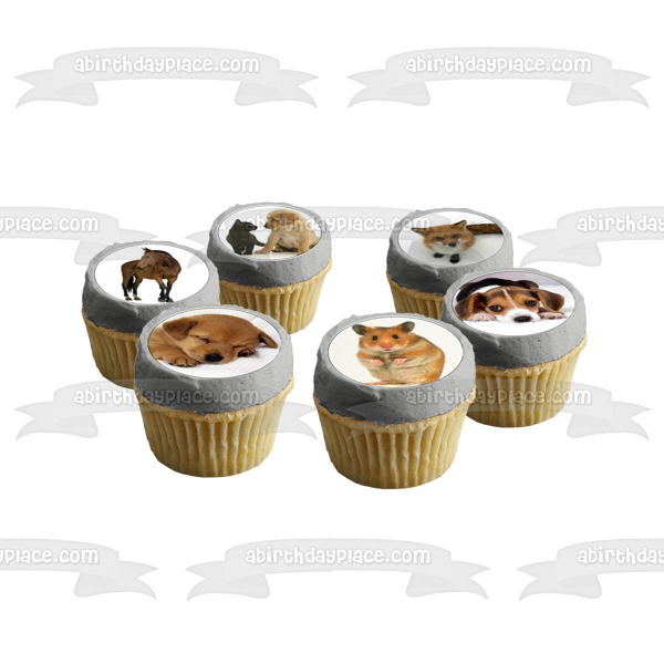 Assorted Animals Cats Pigs Horses Dogs Porcupines Birds Rabbits Edible Cupcake Topper Images ABPID49822