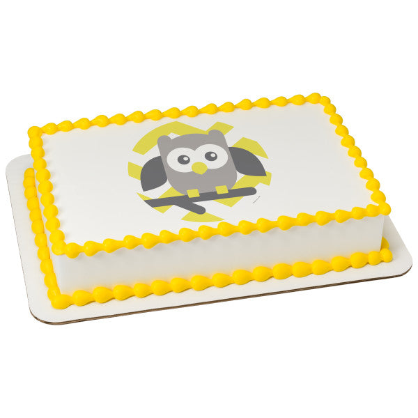 A Birthday Place - Cake Toppers - Baby Owl-Yellow Chevron Edible Cake Topper Image