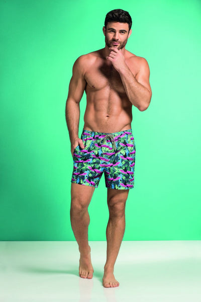 Swimwear Swim Trunks, HAWAI, HAWAI 51805 Swim Trunks - Mpire Men's Fashion