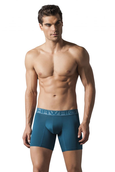 Mens Underwear Boxer Briefs, HAWAI, HAWAI 41724 Boxer Briefs - Mpire Men's Fashion