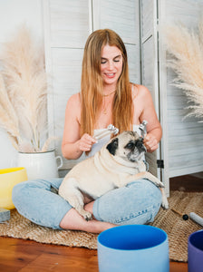 In Person Reiki for Pets