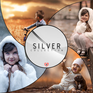 Silver Collection - 10 videos
