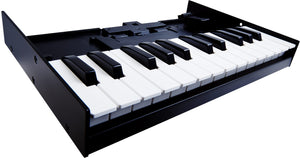 Switched On - Roland K-25m Keyboard