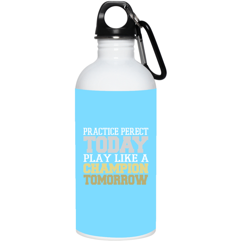 63 Practice Perfect 23663 20 oz. Stainless Steel Water Bottle, Drinkware, Whip Me Wear Fashion & T-Shirts