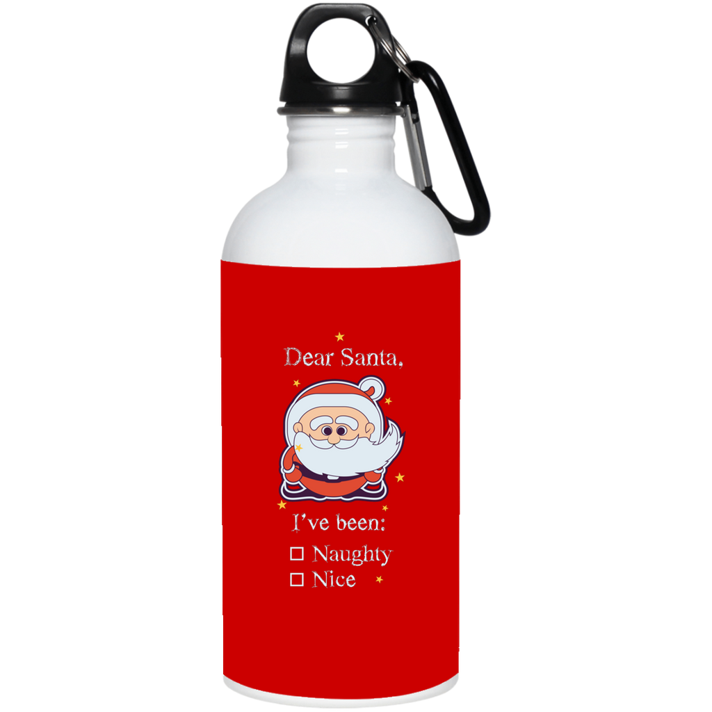 V1381 I've Been Naughty 23663 20 oz. Stainless Steel Water Bottle, Drinkware, Whip Me Wear Fashion & T-Shirts
