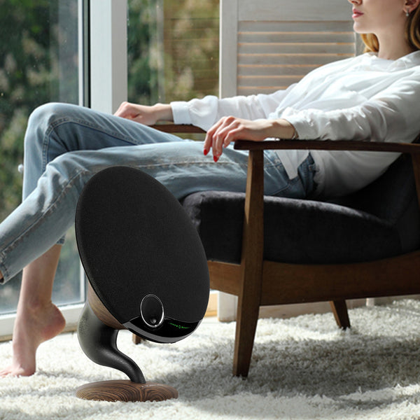 Gramophone Bluetooth Speakers