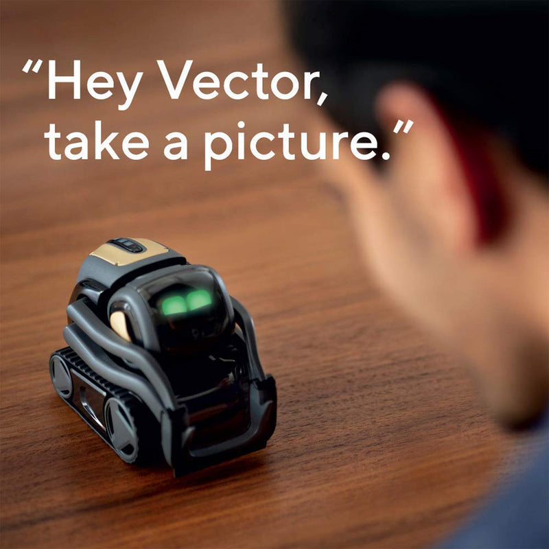 vector robot take a picture lifestyle