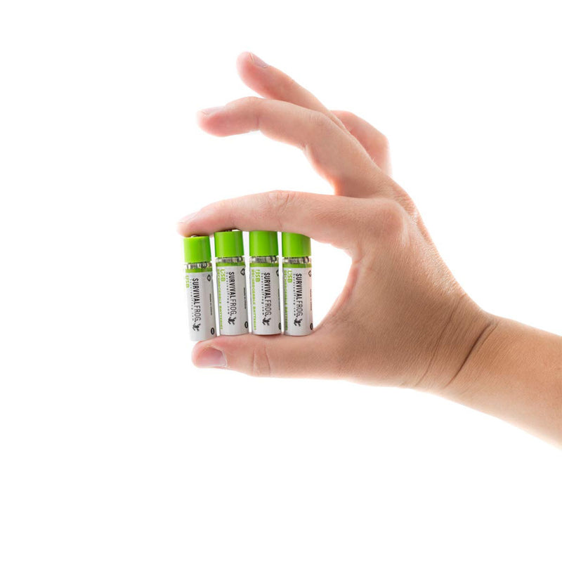 Rechargeable Batteries hand carrying 4 batteries
