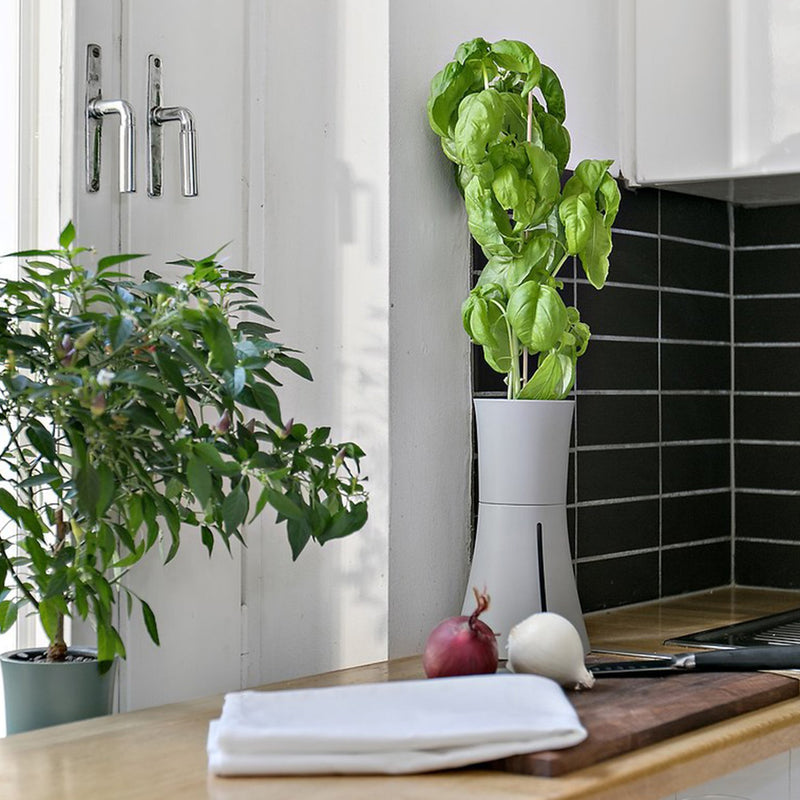 smart pot lifestyle kitchen counter