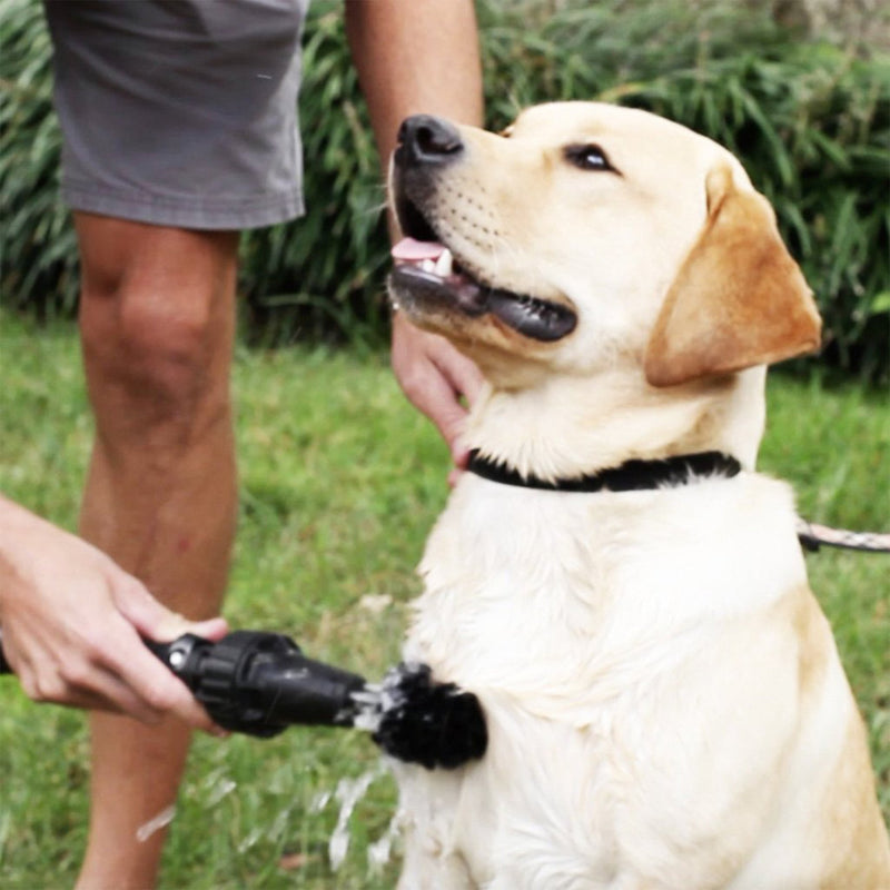 wheel cleaning brush lifestyle cleaning dog