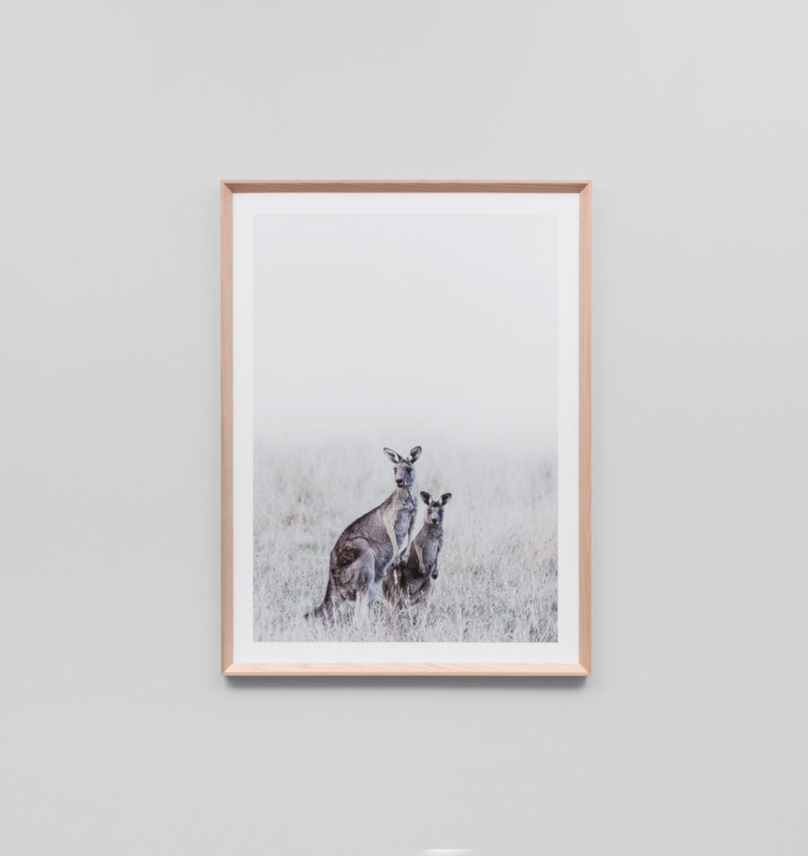 Misty Morning - Kangaroo Print