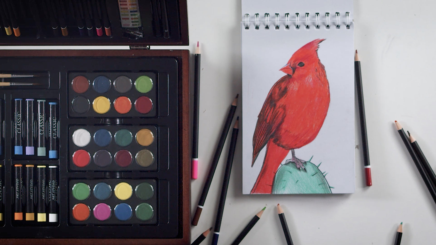 How-to-Draw a Cardinal using Colored Pencils