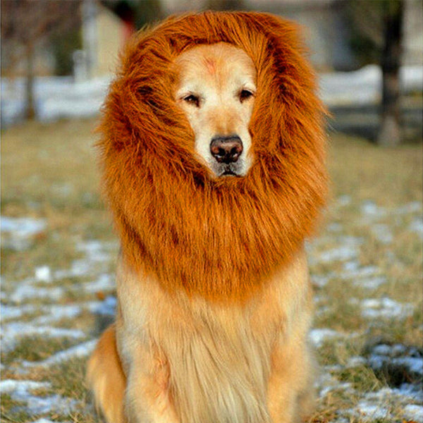 Lion Wig For Dogs™