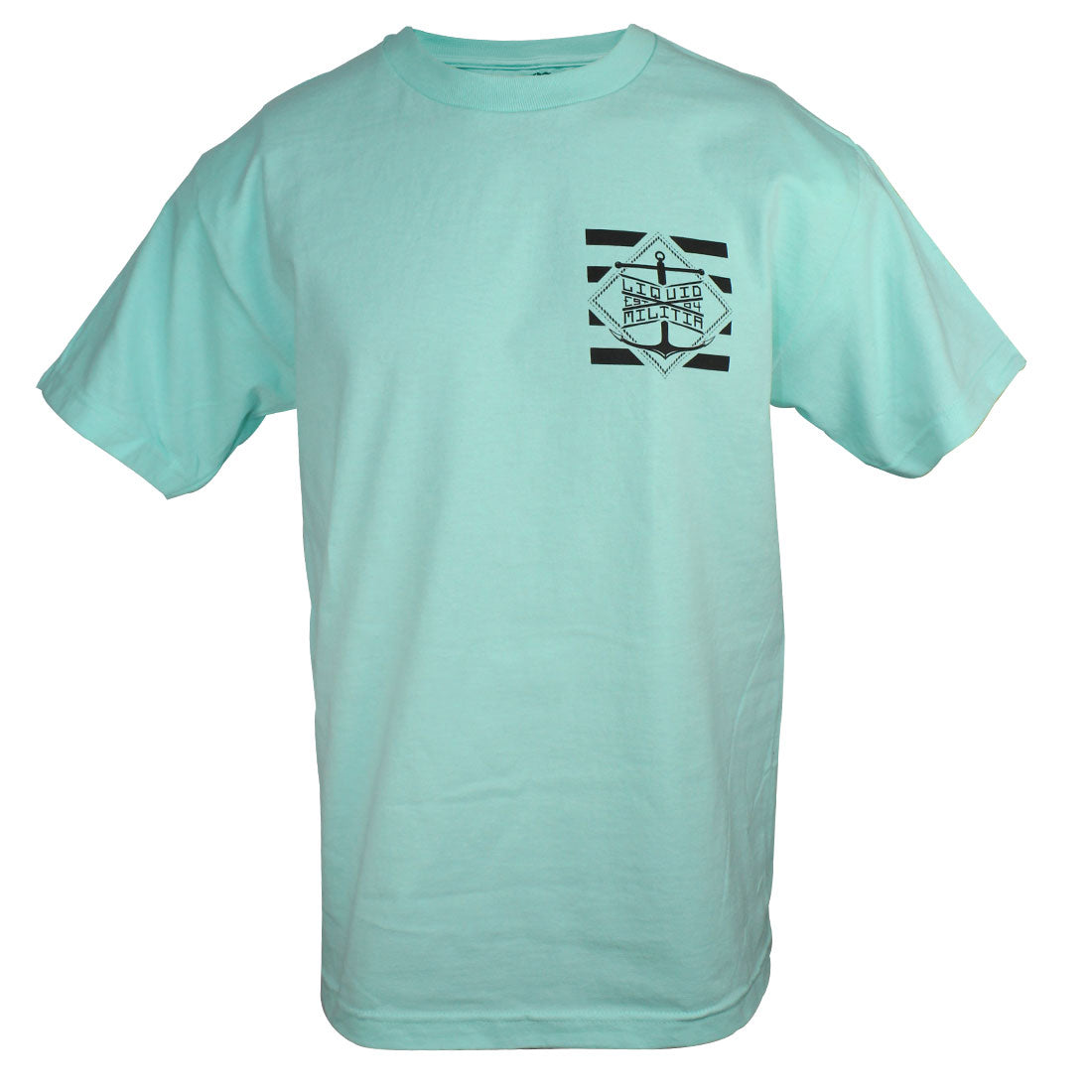 Pylon Mens Standard Tee in Celadon - Front