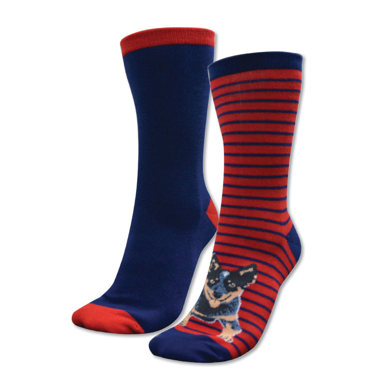 Thomas Cook Kids Homestead Socks Twin Pack Navy/Red & Blue Heeler