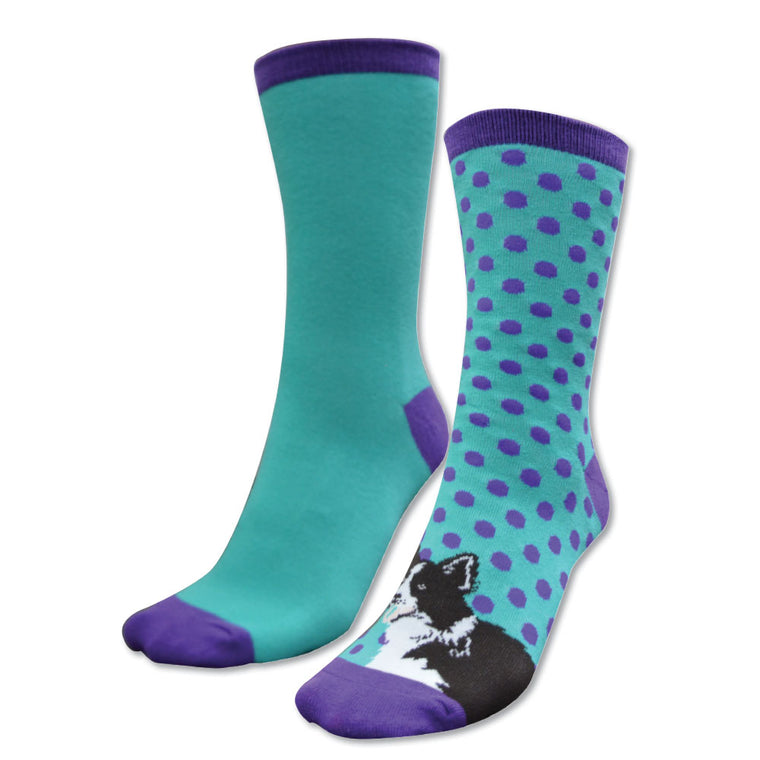 Thomas Cook Homestead Socks Twin Pack Purple/Turquoise & Border Collie