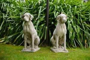 Stone Entrance Dogs