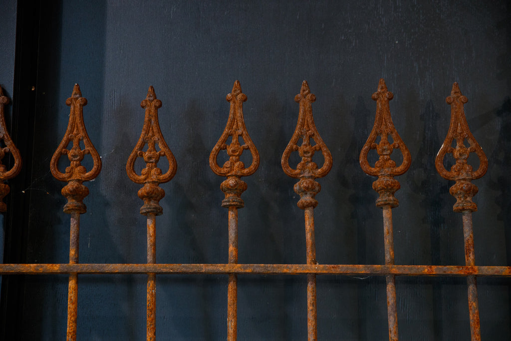 19th Century French Iron Gate