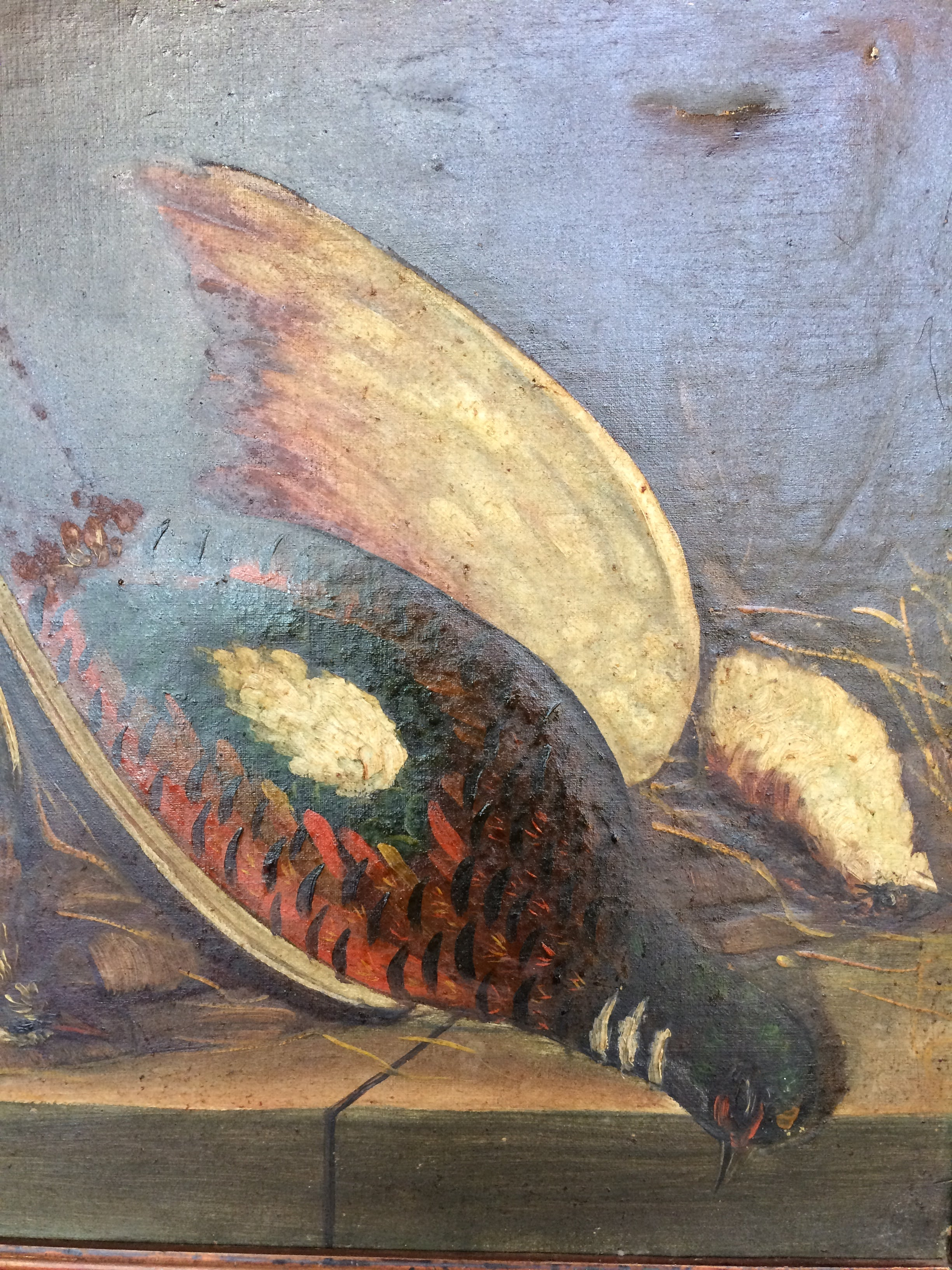 19th Century Pheasant French Oil Canvas