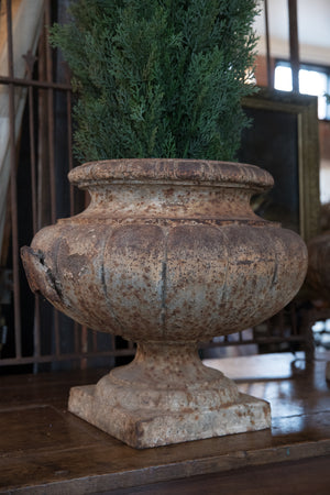 Beautiful Pair of 19th Century French Cast Iron Urns