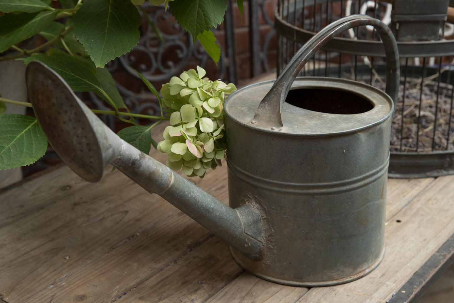 French Vintage Zinc Watering Can