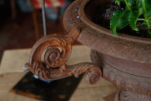 French Cast Iron Urns Rust Patina