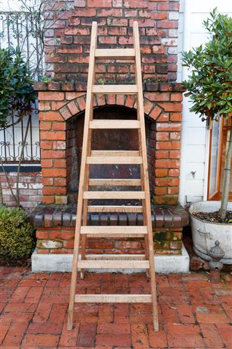 French Cedar Ladder