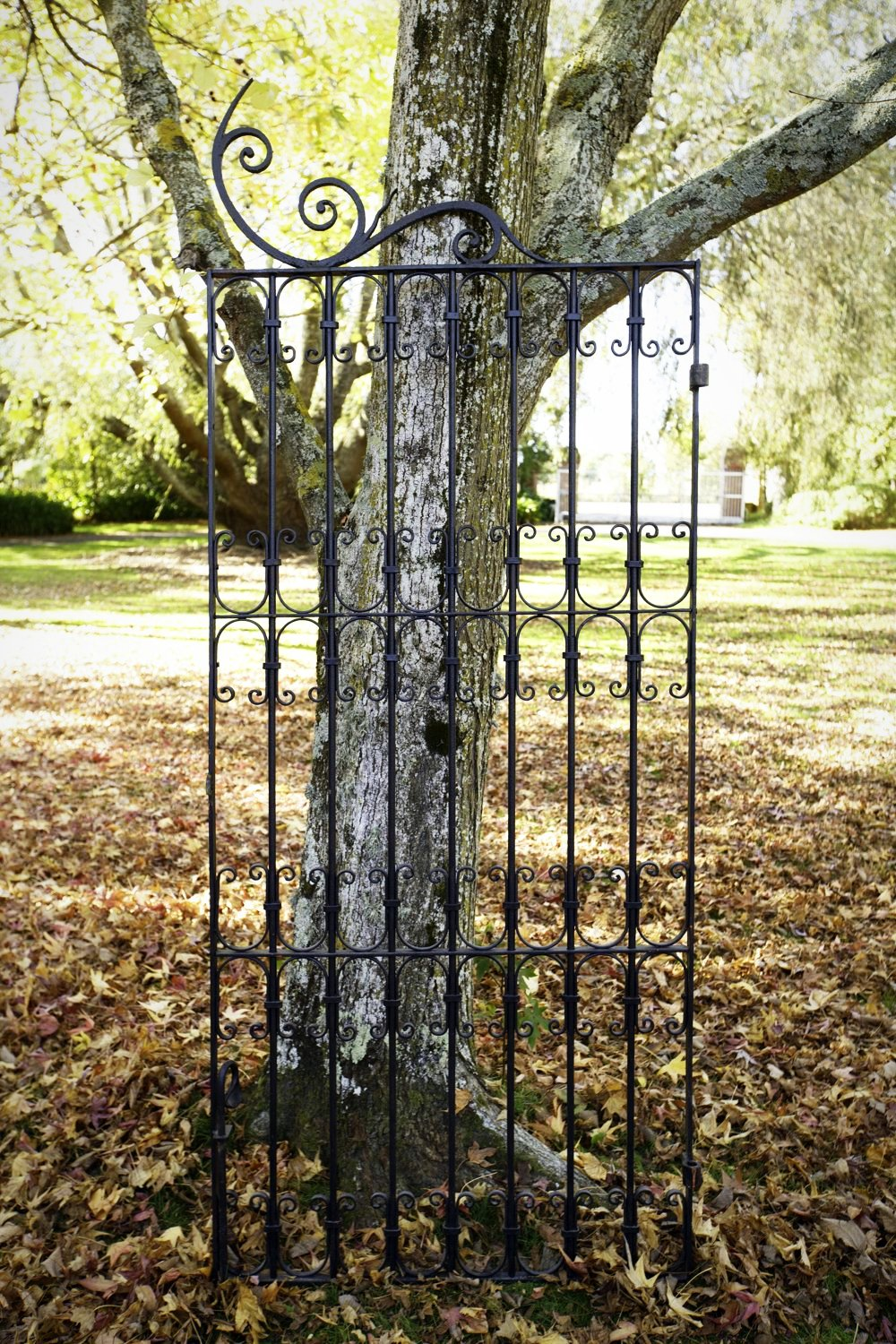 French Wrought Iron Gate