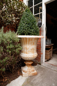 Large French Cast Iron Urns