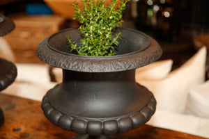 French Cast Iron Urns