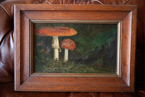 French Oil Canvas Toadstool